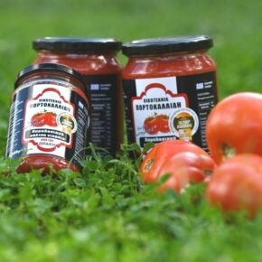 Οικογένεια Πορτοκαλλίδη Παραδοσιακή Σάλτσα τομάτας 350γρ (1)
